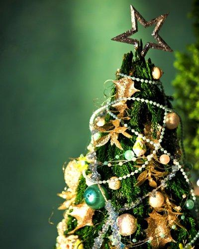 クリスマス会を開くとしたら…5つの場所