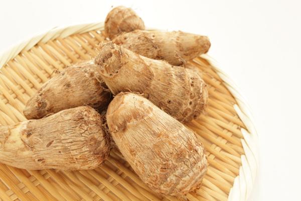 里芋の栽培のポイントはこの5つ!