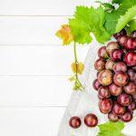 ぶどうの栽培で知っておきたい5つのこと